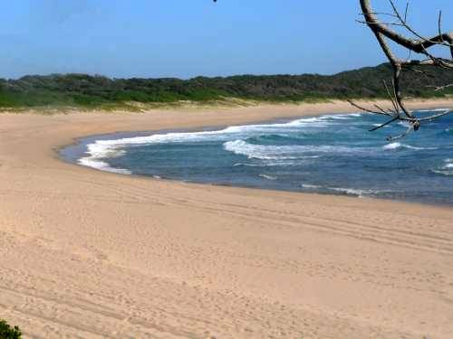 St Lucia Turtle nesting beach. South Africa