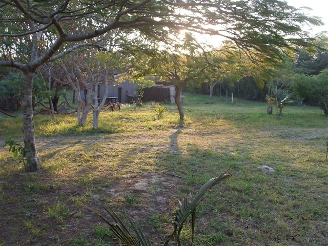 Camping sites in Sodwana Bay. Sodwana Campsite