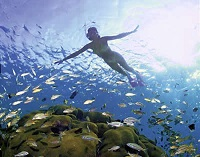 Cape Vidal snorkeling day trips. KZN South Africa